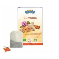 TISANE CURCUMA 20X1.2 G