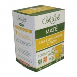 MATE GINGEMBRE CITRON 15X2G