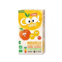 PACK FAMILIAL COOL FRUIT MIRABELLE POMME ACEROLA 12X90GRS