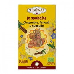 TISANE GINGEMBRE FENOUIL CANNELLE 16X2G