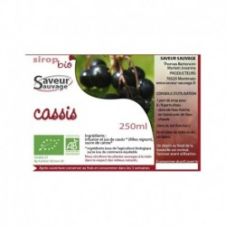 SIROP 25CL CASSIS