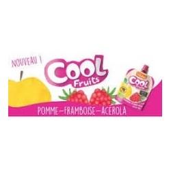 PACK FAMILIAL COOL FRUIT FRAMBOISE 12X90GRS