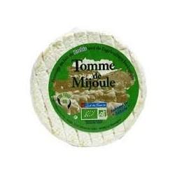 TOMME DE MIJOULE 28%MG
