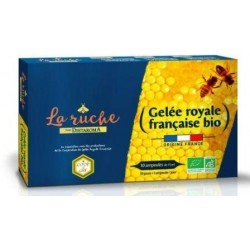GELEE ROYALE AMPOULES 10X15ML