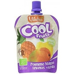 COOL FRUITS POMME MANGUE ANANAS 90G