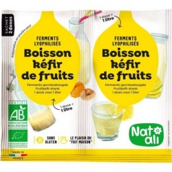 FERMENT BOISSON KEFIR FRUITS 2X5G