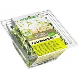 GRAINE GERMÉE TOURNESOL 50G